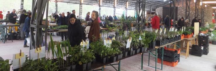 Plantenbeurs op 22 april